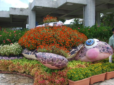 2010_0718in 沖縄0127.JPG