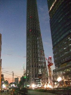 2010_1108姉と東京0019.JPG