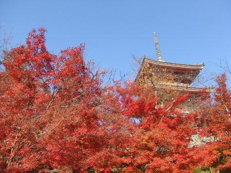 2010_1126in 京都0028.JPG