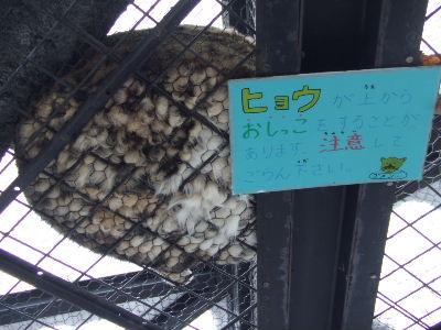2011_0308北海道ツアー0050.JPG