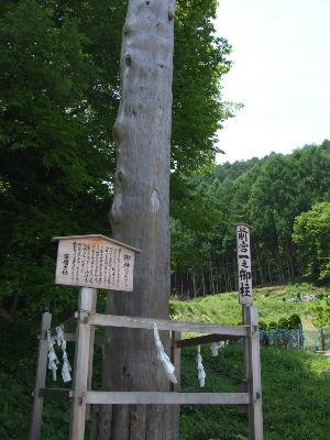 2011_0604諏訪大社巡り0010.JPG
