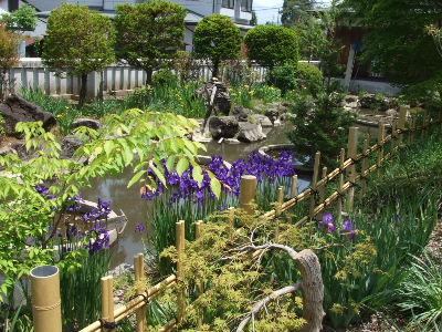 2011_0604諏訪大社巡り0028.JPG