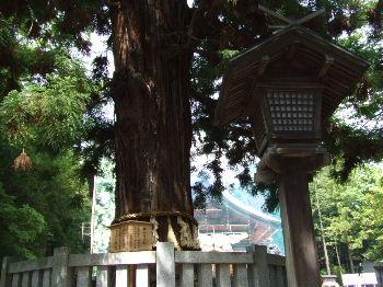 2011_0604諏訪大社巡り0060.JPG