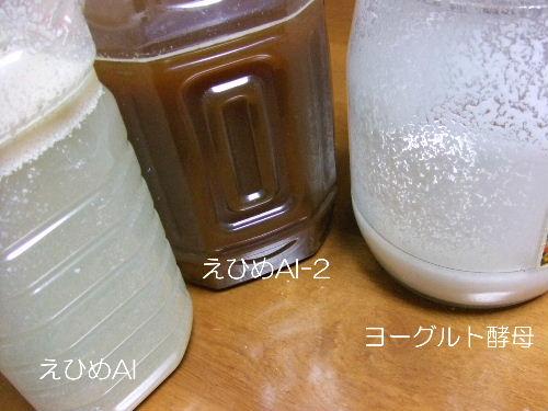 発酵2種.JPG